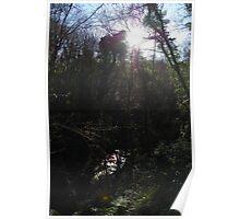 Reach for the Sky, Enchanted Forest, Dun a Rí 2012 Poster