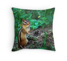 Chippy's Flower Garden Throw Pillow