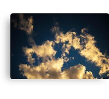 Looking Up 01 Canvas Print