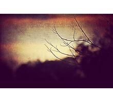 reach 2 Photographic Print
