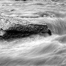 Timeless black and white - Manotick, Ontario by Josef Pittner