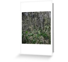 forest screen Greeting Card