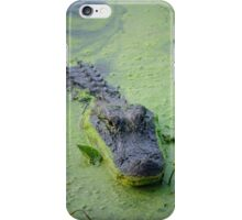 Just Pet Me iPhone Case/Skin
