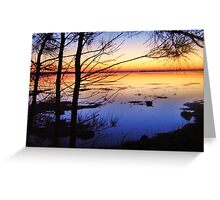 Reaching Toward The Horizon  Greeting Card