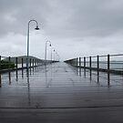 Boardwalk, Coffs Harbour by Catherine Davis