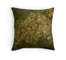 Andromeda Shrub - Pieris japonica - Lily of the Valley Bush Throw Pillow