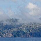 Approaching Santa Catalina Island by Celeste Mookherjee