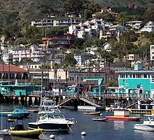 Avalon, Catalina by Celeste Mookherjee