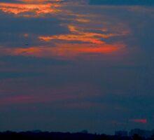 Hammock sunset by MarianBendeth