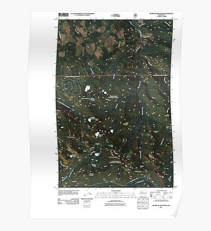 USGS Topo Map Washington State WA Bearhead Mountain 20110428 TM Poster