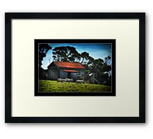 The Old Shed Framed Print