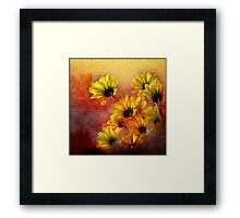red and yellow gallimaufry  Framed Print