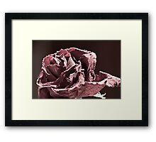 Faded (er - Desaturated) Rose Framed Print