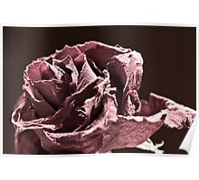 Faded (er - Desaturated) Rose Poster