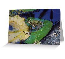 Backyard Frog 1 Greeting Card