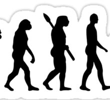 Evolution Hurdles Sticker