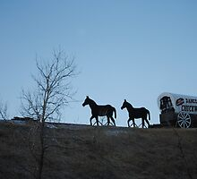 Dances with Wolves  Chuckwagon by JuliaWright