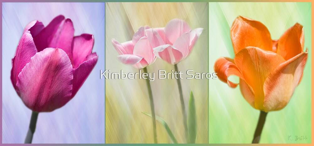 Variety by KBritt