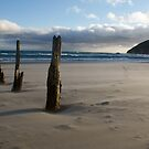 Old Jetty Beams, St Clair Beach, Dunedin, 3 by DeliaA