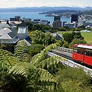 Wellington Cable Car, North Island, New Zealand by DeliaA