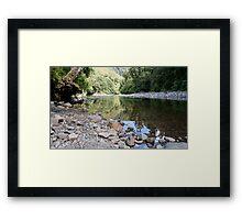 Kaitoke Regional Park, North Island, New Zealand Framed Print