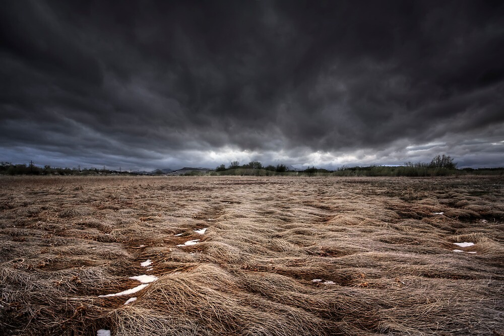 Storm Field by Bob Larson