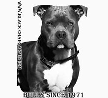 A Bully since 1971 Unisex T-Shirt