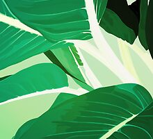 Jungle by Honeyboy Martin