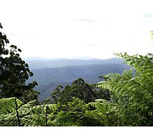 Dandenongs from Mount Donna Buang Photographic Print