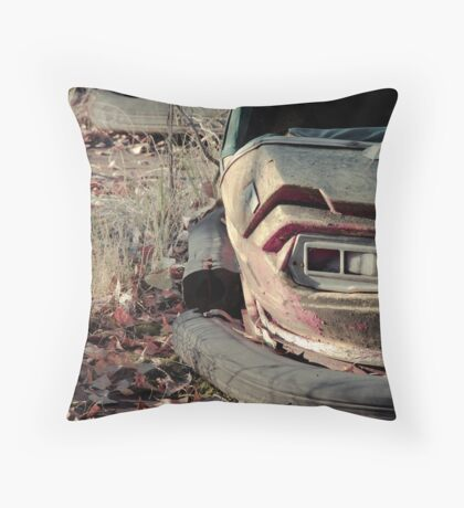Watching, Waiting Throw Pillow