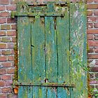 Whats behind the old green door?? by Nicole W.
