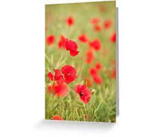 Poppy Red Greeting Card