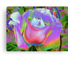 Rose of a Different Color Canvas Print
