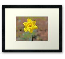 Yellowhead Framed Print