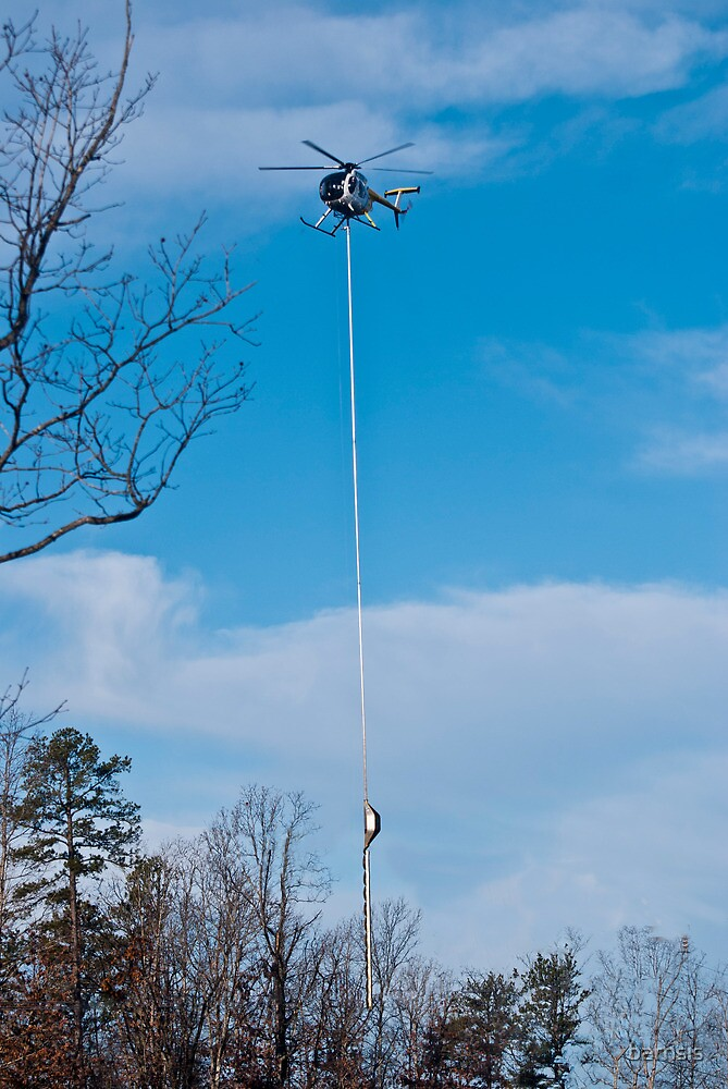 Tree Trimming Helicopter  by barnsis