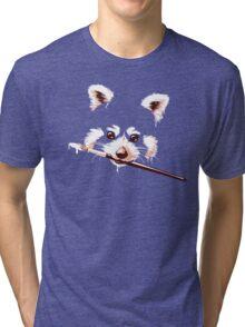 Ailuridae Tri-blend T-Shirt