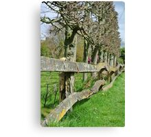 Countryside Trees Canvas Print