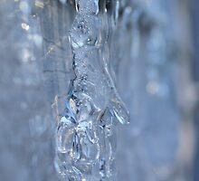 Frozen Ice Hand by anitahiltz