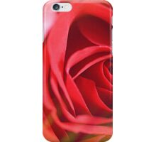 color dash on a red rose iPhone Case/Skin