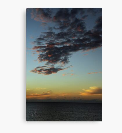 Sunset - December 10, 2011 Canvas Print