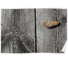 Pine Cone and Old Wood Poster