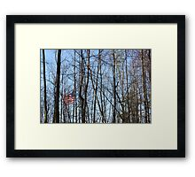 Stars Stripes and Trees Framed Print