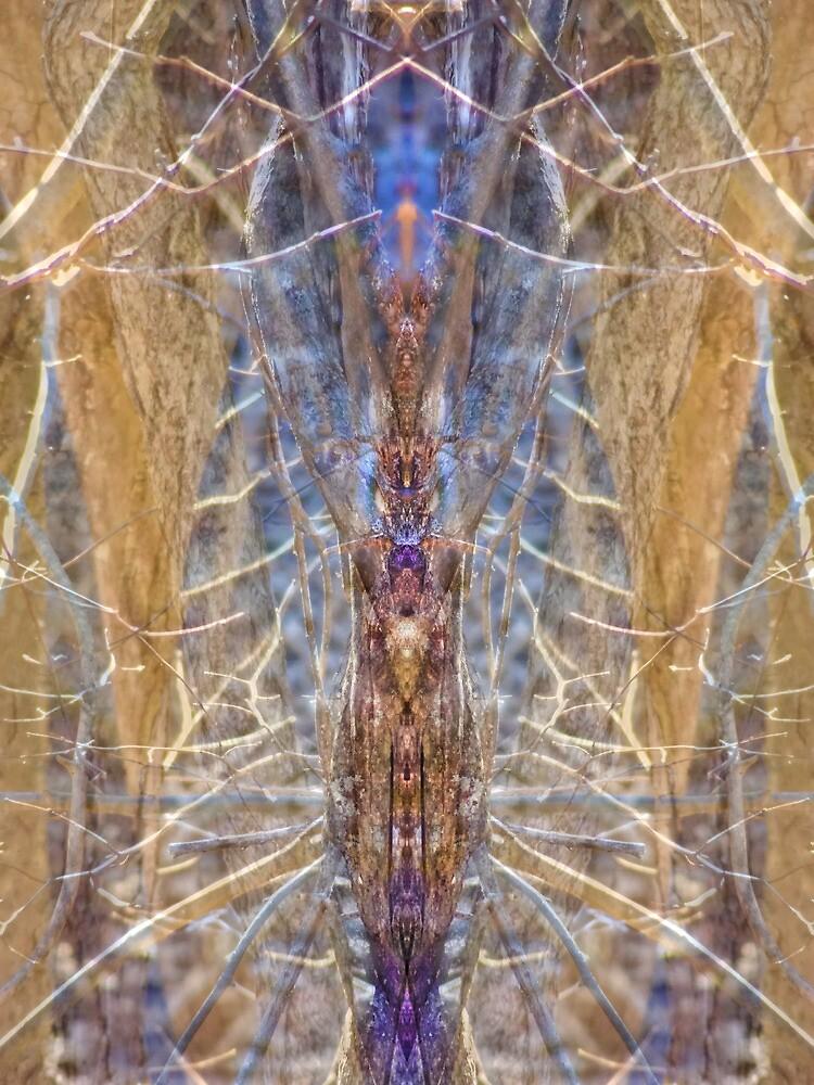 Sacred Spider by Lynzi Wildheart