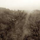 Japan Waterfall Landscape 01 - Sepia by Elvis Diéguez