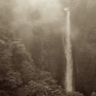 Japan Waterfall Landscape 02 - Sepia by Elvis Diéguez