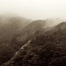 Japan Landscape 01 - Sepia by Elvis Diéguez
