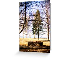 Sea Front Greeting Card