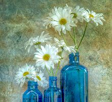 Daisies in Blue by Barbara Ingersoll