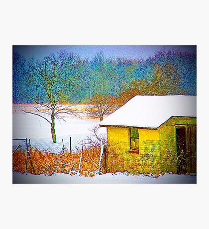 Vivid Snowfall Photographic Print