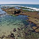 La Jolla Tide Pools by JThill